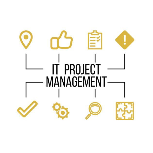 IT Project Management Service